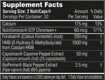 Burn Lab Pro Ingredients